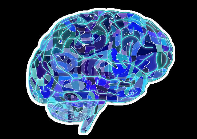 Gehirntraining und Gedächtnistraining